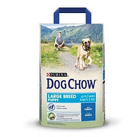 Корм для щенков Dog Chow Puppy Large Breed с индейкой, 14кг