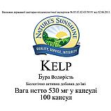 Kelp Бура водорість, Келп, НСП, NSP, США. Джерело органічного йоду, фото 3