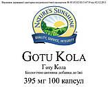 Gotu Kola Готу Кола, NSP, НСП, США. Підвищує розумові здібності, пам'ять, швидкість реакції, фото 3