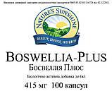 Boswellia Plus Босвеллия Плюс, НСП, США. Для сосудов, суставов и костей. Уменьшает болевой синдром., фото 3