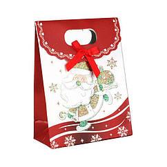 Сумочка подарочная Gift Bag Velcro Бумага Дед Мороз на коньках 16x12x6 см 2083, КОД: 1347494