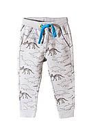 Спортивные брюки Динозавры