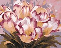 """Картина по номерам """"Нежные тюльпаны"""""""