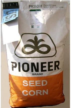 Подсолнечник PIONEER/Пионер ПР64Ф50 / PR64F50 (новий) RM 43 USA(США) 2015Г, фото 2