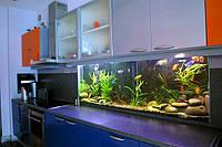 Интерьерный аквариум — рабочая стена кухни