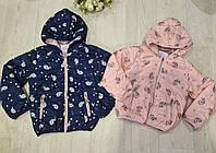 Куртка для девочек оптом, S&D, 98-128 см, № СН-6089