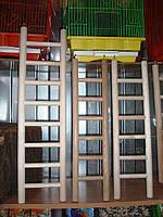 Деревянная лесенка для птиц-40 см