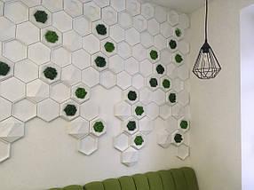 """Гипсовые 3д декоративные панели под мох для стен и потолков """"Соты"""" 25 шт, фото 2"""