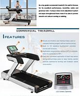 """Профессиональная электрическая беговая дорожка """"Luxon Pro LS T-800"""" LED, фото 1"""