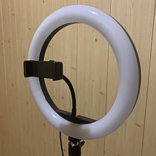 Кольцевая лампа 26 см RGB со штативом на 2м лампа для селфи лампа для тик тока, фото 2