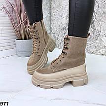 Бежевые ботинки женские замшевые натуральные 971, фото 3