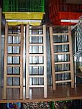 Дерев'яна драбинка для птахів-60 см, фото 2