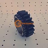 Шестерня ведомая 3 диапазона КПП ЮМЗ 8270 75-1701116-Б, фото 4