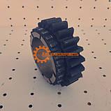 Шестерня ведомая 3 диапазона КПП ЮМЗ 8270 75-1701116-Б, фото 5