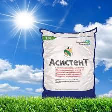 Инсектицид Асистент аналог Моспилан Ацетамиприд 200 г/кг от компании Агрохимические технологии