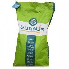 Насіння соняшнику ЄС Яніс F1 (Euralis ) (Евролайтинг)