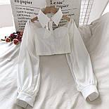 Жіноча блуза бюстьє з чокером - коміром і рукавами-ліхтариками (р. 42-44) 6813408, фото 7
