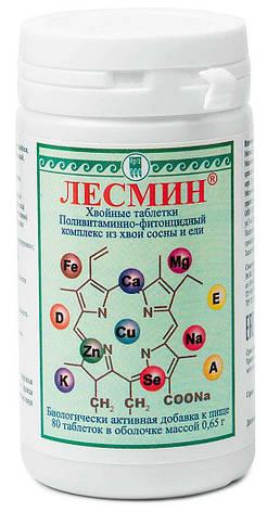 Лесмин, хвойные таблетки - природный поливитаминно-фитонцидный концентрат из хвои сосны и ели, фото 2