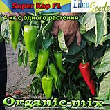 СУПЕР КАП F1 / SUPER KAP F1, тип Капия, семена сладкого перца (ТМ LIBRA SEEDS), пакет 250 семян, фото 3