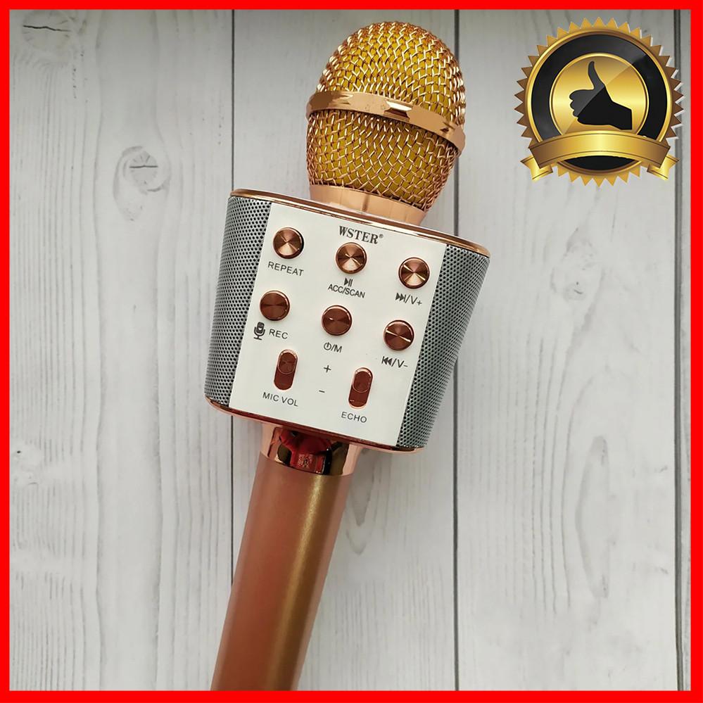 Микрофон караоке для детей беспроводной USB Bluetooth Игрушка микрофон с колонкой Wster WS-1688 Розовый Rose
