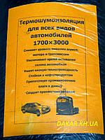 Термошумоизоляция автомобильная 1700Х3000