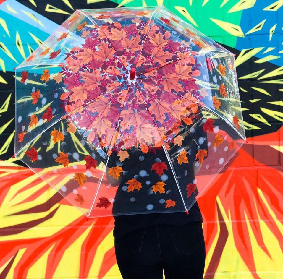 Зонт женский полуавтомат с куполом 97 см Swift прозрачный, осенний листопад. Анти-ветер, 8 спиц.