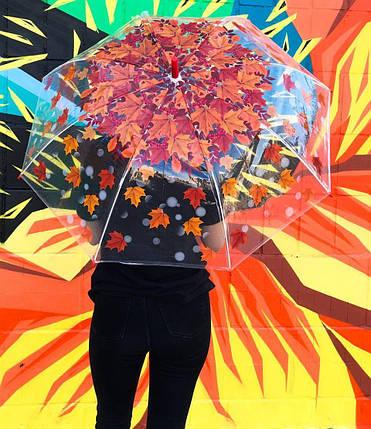 Зонт женский полуавтомат с куполом 97 см Swift прозрачный, осенний листопад. Анти-ветер, 8 спиц., фото 2