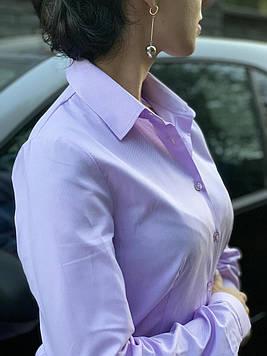 Блуза розовая 100% хлопок. INGVAR