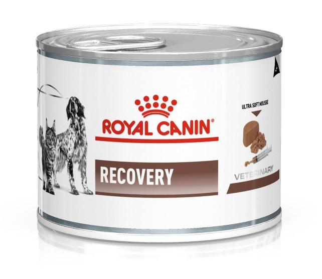 Влажный корм для собак в период восстановления после болезни Royal Canin Recovery 195 г