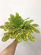 Искусственный куст.Декоративное, комнатное растение-кротон., фото 2