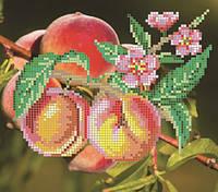 """Рисунок на ткани для вышивания бисером """"Персики"""""""
