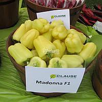 Семена перца Мадонна F1 / Мadonna F1, 1000 семян