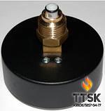 """Термоманометр аксиальный TIM 80 1/2"""", 0-4бар, 120 гр Watts, фото 2"""
