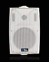 Настенная акустика Sky Sound NS-30TW