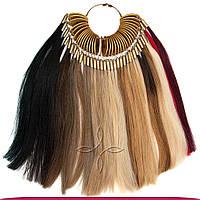 Палитра славянских волос