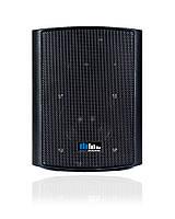 Настенная акустика Sky Sound NS-40B
