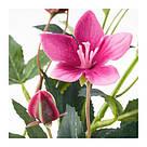 ИКЕА (IKEA) СМИККА, 504.097.32, Искусственный листок, Розовый пасекфлауэр, розовый, 60 см - ТОП ПРОДАЖ, фото 2