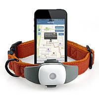 GPS/GSM трекер Appello 4P – GPS ошейник для прогулки с домашними животными (для собак)