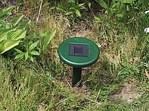 Отпугиватель грызунов на солнечной батарее Solar Rodent Repeller, фото 3
