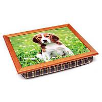 Поднос с подушкой BST 040291 44*36 коричневый собака на поле с ромашками