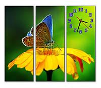 Новинка. М 84. Часы на стену модульные. Ромашка с бабочкой. 30x80 30x80 30x80 см