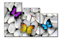 Новинка. М 85. Часы на стену модульные. Бабочки на камнях. 30x60 30x50 30x40 см