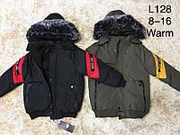 Куртки зимние на мальчика оптом, F&D, 6-16 рр, фото 1