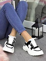 Кросівки шкіра Balenc!aga біло-чорні 7250-28 Розміри 36-40, фото 3