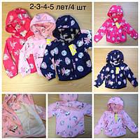Курточки вітровки для дівчаток на вік 2роки