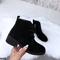 Ботинки женские черные натур замша 446, фото 1