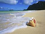 Туры в Штаты (США) - Голливудские каникулы + отдых на Гавайях, фото 2