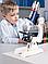 Микроскоп  школьный(300x, 600x, 1200x) (в кейсе), фото 3
