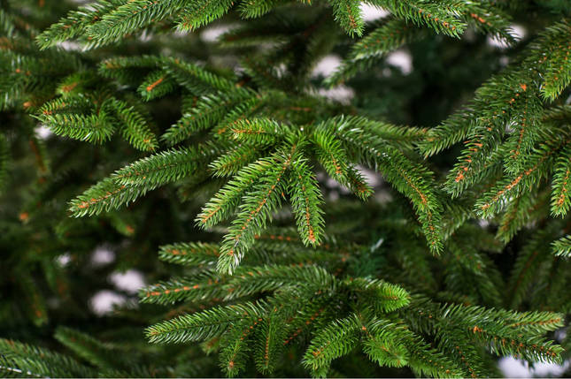 Новогодняя искусственная литая ель 2,5 метра Альпийская зеленая, фото 2