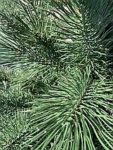 Новогодняя искусственная сосна литая 2,5 метра зеленая, фото 2
